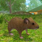 com.avelog.mouse