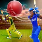 com.bigfreegames.crickett20.cricketgames