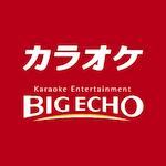 jp.co.dkkaraoke.app.bigecho
