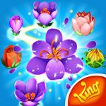 com.king.blossomblast